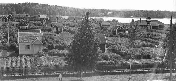 KOSKESTA VOIMAA  ARKI  AIKAKAUSI 1918 1940  SIIRTOLAPUUTARHAT