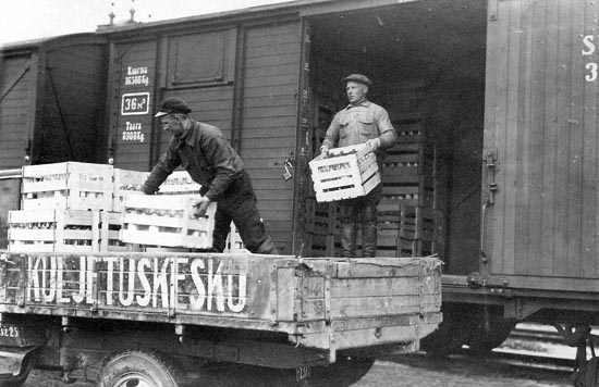 fasistinen venäjä hyökkää suomeen